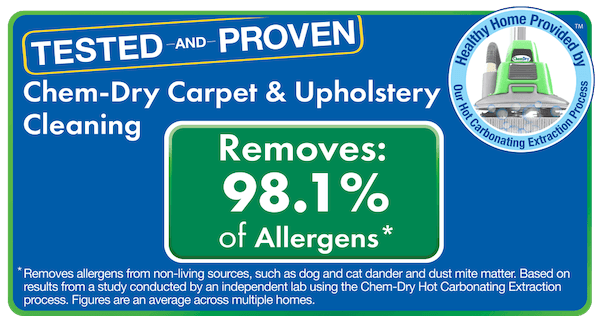 chem dry removes 98% of allergens test results
